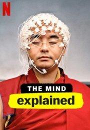 The Mind, Explained 1. Sezon 5. Bölüm