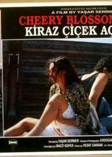 Yerli Erotik Film | HD