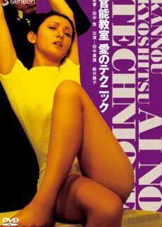 Kanno kyoshitsu: ai no tekunikku +18 Japon Erotik İzle full izle